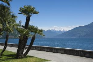 Lakeside Gardens at Menaggio, Lake Como, Italian Lakes, Lombardy, Italy, Europe by James Emmerson