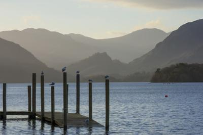 View towards Borrowdale, Derwentwater, Keswick, Lake District National Park, Cumbria, England, Unit