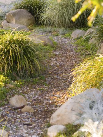 Stone Path Through Garden, Santa Barbara, California