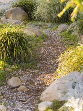 Stone Path Through Garden, Santa Barbara, California by James Forte