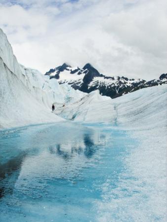 Tourist Trek Past Glacial Meltwater Pond on Mendenhall Glacier
