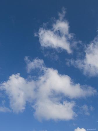 White Puffy Clouds with Blue Sky, Ambergris Caye, Belize