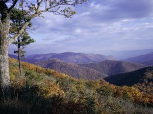 Area Near Loft Mountain, Shenandoah National Park, Virginia, USA by James Green