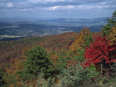 Trees in Fall Colours with Agricultural Land in the Background in Blue Ridge Parkway, Virginia, USA
