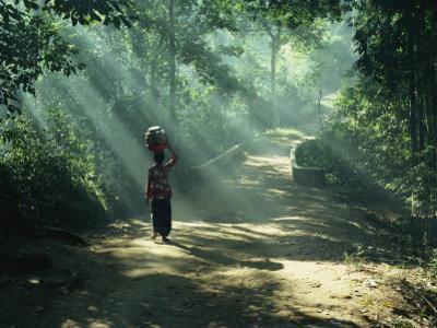 Woman Carrying Coconuts to Market, Peliatan, Bali, Indonesia, Southeast Asia