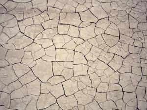Patterns in Mud Cracks in Drought Area by James Gritz