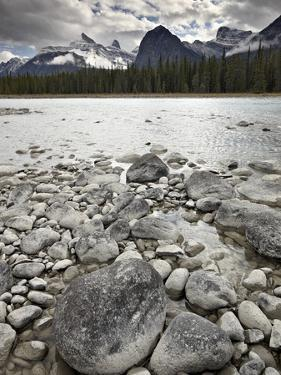 Athabasca River, Jasper National Park, UNESCO World Heritage Site, Alberta, Canada, North America by James Hager
