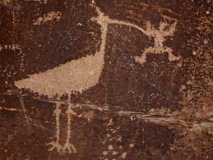 Bird Petroglyph, Petrified Forest National Park, Arizona, United States of America, North America by James Hager
