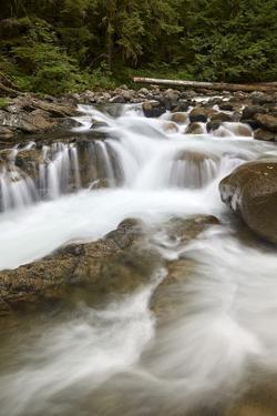 Cascades on Deception Creek, Mount Baker-Snoqualmie National Forest, Washington, U.S.A. by James Hager