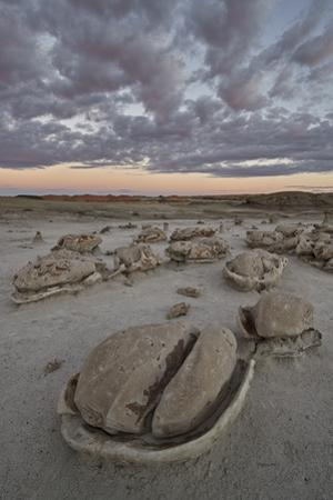 Egg Factory at dawn, Bisti Wilderness, New Mexico, United States of America, North America by James Hager