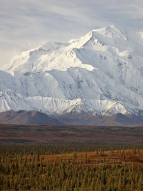 Mount Mckinley (Mount Denali), Denali National Park and Preserve, Alaska, United States of America by James Hager