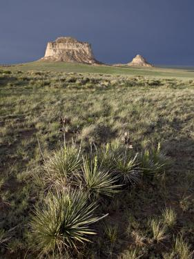 Pawnee Buttes, Pawnee National Grassland, Colorado, United States of America, North America by James Hager