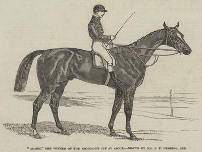 Alarm, the Winner of the Emperor's Cup at Ascot