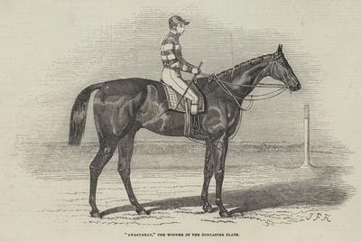 Sweetmeat, the Winner of the Doncaster Plate