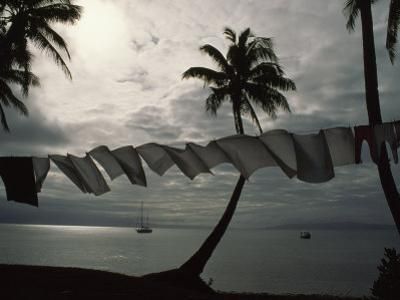 Buca Bay, Laundry and Palm Trees