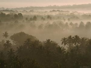 Early Morn Fog Lies over Old Goa Landscape, India by James L. Stanfield