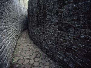 The Ruins of Great Zimbabwe by James L. Stanfield