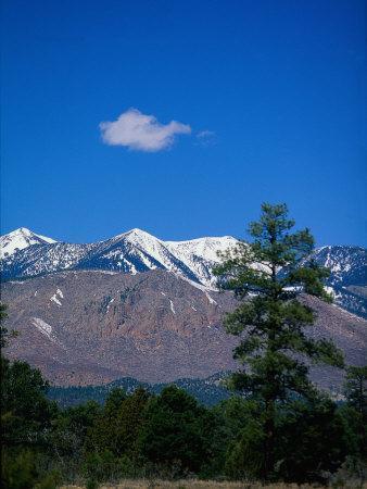 Snow-Capped Mountains, AZ