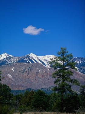 Snow-Capped Mountains, AZ by James Lemass