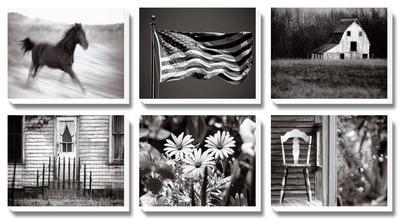 Americana by James O'mara
