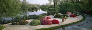 In a Japanese Garden, a Gardener Rakes the Gravel to Suggest Ripples by James P. Blair