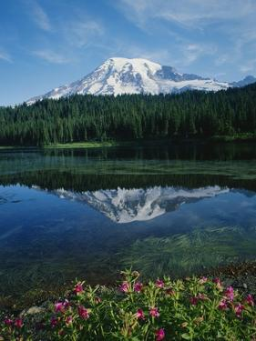 Reflection of Snowcovered Mount Rainier on Reflection Lake by James Randklev