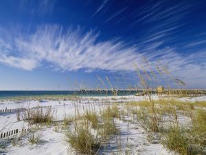 Sea Oats and White Sand Dunes by James Randklev