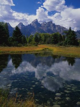 Shallow Pond Near Teton Range by James Randklev