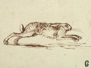 A Hare Running, with Ears Laid Back by James Seymour