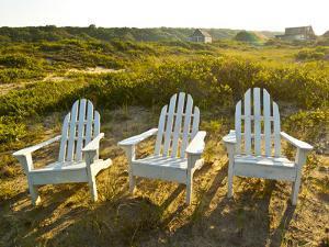 Adirondack Chairs on Lawn at Martha's Vineyard Near the Beach by James Shive