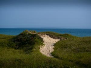 Sandy Path on Martha's Vineyard Beach. by James Shive