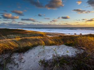 Sunset Along Moshup Beach, Martha's Vineyard with View of Ocean and Grass Blowing During Late Fall by James Shive