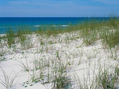 Beachfront by James Volosin