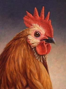 Rooster by James W. Johnson