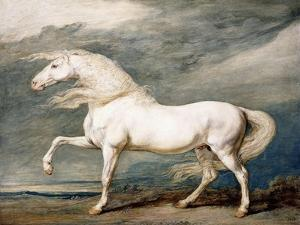 Adonis, King George III's Favourite Charger by James Ward