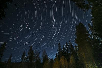 Time Lapse Photograph Showing Star Trails Above the Forest Near Lake Tahoe, California