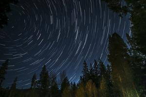 Time Lapse Photograph Showing Star Trails Above the Forest Near Lake Tahoe, California by James White