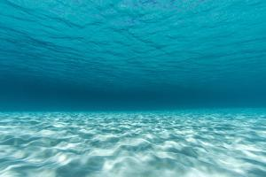 Underwater Photograph of a Textured Sandbar in Clear Blue Water Near Staniel Cay, Exuma, Bahamas by James White