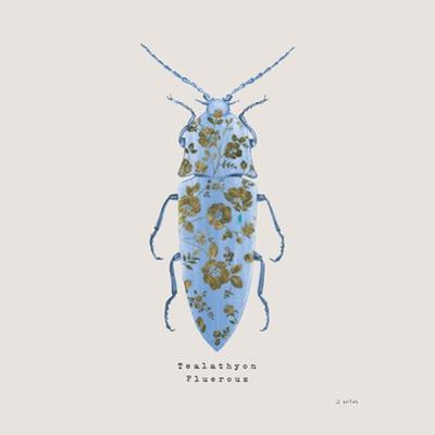 Adorning Coleoptera VIII Sq Blue by James Wiens