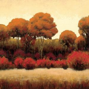Autumn Forest II by James Wiens