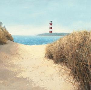 Beach Path Square by James Wiens