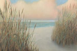 Beach Trail I by James Wiens
