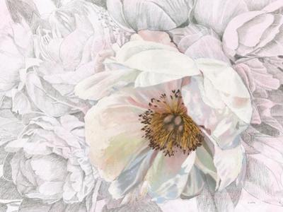 Blooming Sketch Crop by James Wiens