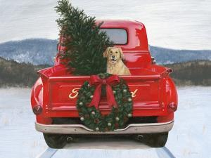 Christmas in the Heartland IV Ford by James Wiens