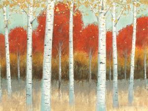 Fall Promenade I Crop by James Wiens