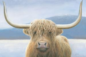 Highland Cow by James Wiens