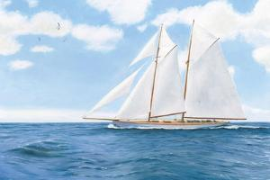 Majestic Sailboat White Sails by James Wiens