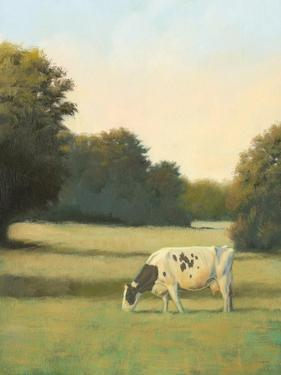 Morning Meadows I by James Wiens
