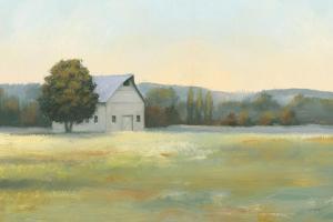 Morning Meadows II by James Wiens