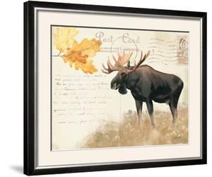 Northern Wild III by James Wiens